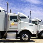 New Harvest Transportation Launches New Site